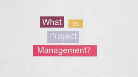 What is project management
