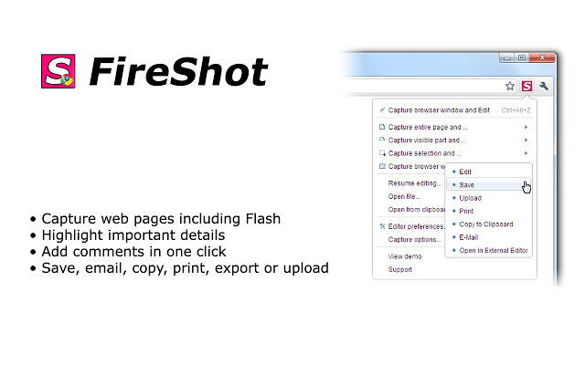 fireshot screen capture